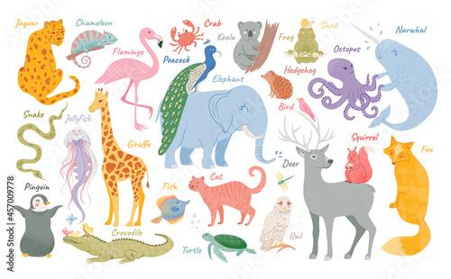 Fototapeta premium Set of funny adorable animals. Exotic jungle and savanna animals. Childish characters. Forest inhabitants. Vector illustration