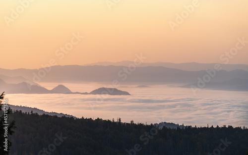 Fototapeta premium Pieniny we mgle o wschodzie słońca widok z Turbacza na Pieniny i dolinę Dunajca