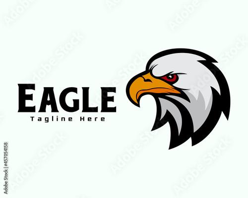 Fotografie, Obraz eagle falcon hawk savage face side view mascot logo template illustration