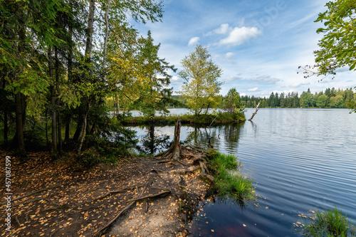 Fotografie, Obraz Educational Trail Kladska (Glatzen) - one of the oldest and largest nature reser