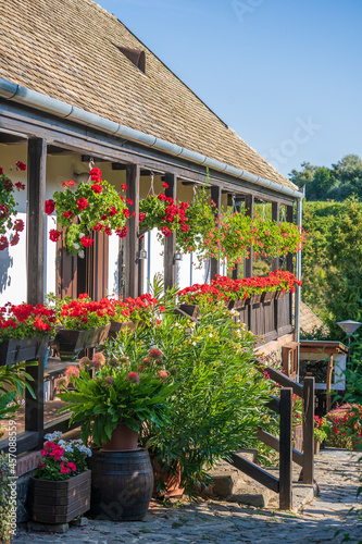 Old rural house and yard with flowers in ethnographic village Holloko in Hungary Fototapet