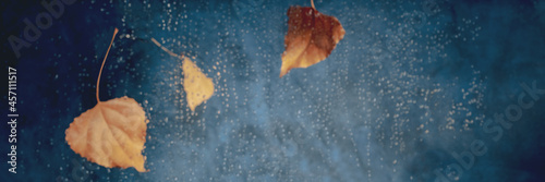 Autumn rain panorama, abstract background with raindrops and copy space, toned image, abstract blurred background