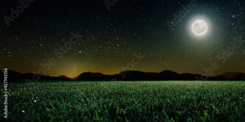 Green field on the background of the night sky.