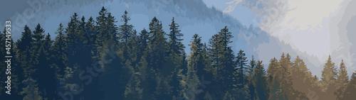 Fotografie, Obraz Amazing forest trees landscape in black forest panorama banner long illustration