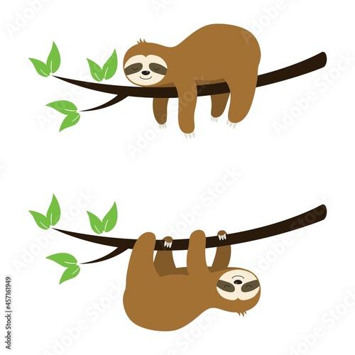 Fototapeta premium vector set of cute sloth cartoon on a tree