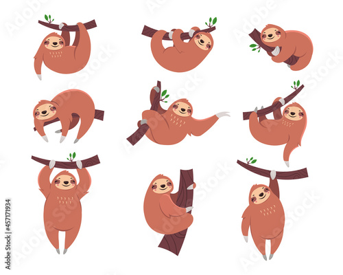 Fototapeta premium Cute sloth cartoon character flat vector illustrations set. Collection of drawings with sleepy animal hanging from branch for children isolated on white background. Zoo, nature, wildlife concept
