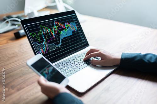 Canvastavla 株価