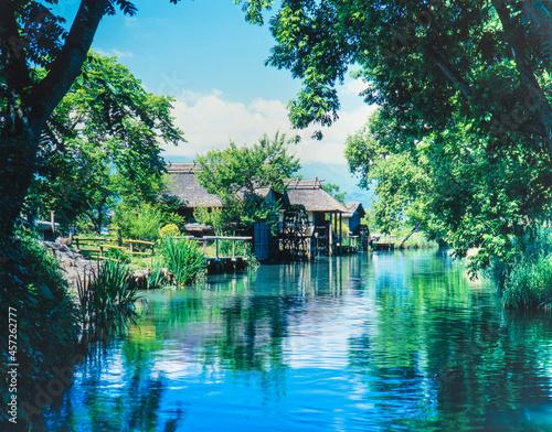 Fototapeta 長野県 穂高町 大王ワサビ農場の川と水車小屋