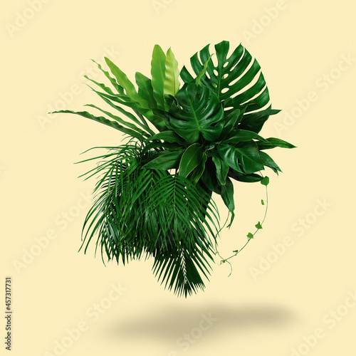 Fotografia A bush of green leaves with a bright yellow background and shadows of the sun