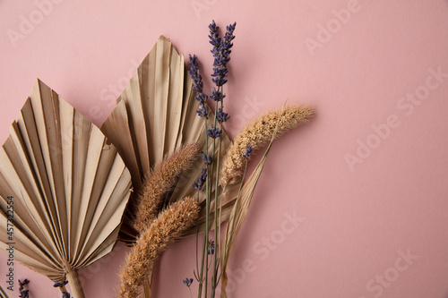 Fototapeta Dried tropical palm tree leaf and dry flower decoration on a pastel pink backgro
