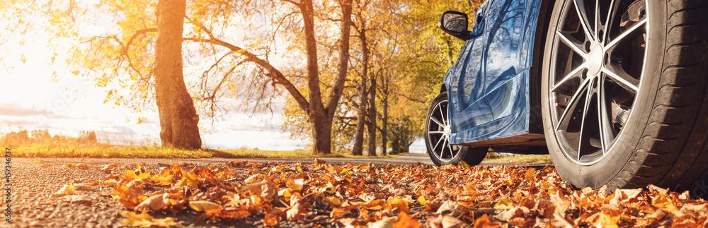 Leinwandbild Motiv - candy1812 : Blue car on the road in the natural park.