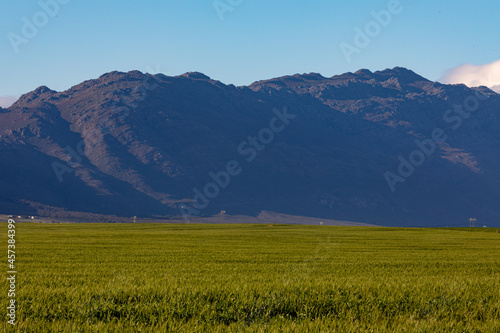 General view of countryside landscape with cloudless sky