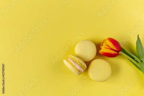 Yellow macarons on a yellow background with a tulip