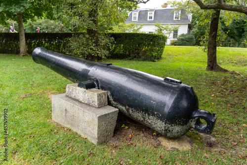 Obraz na plátně old cannon in the fortress