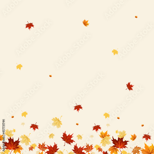 Canvas Print Autumn falling leaves with pink background and maple leaves