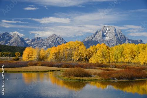 Fotografie, Obraz grand teton autumn