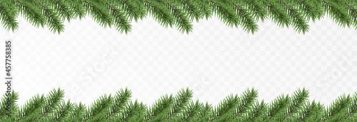 Fototapeta Vector fir branches