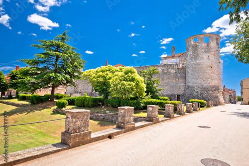 Billede på lærred Village of Svetvincenat ancient stone walls and tower view