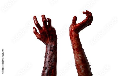 Obraz na plátně Bloody hands background,