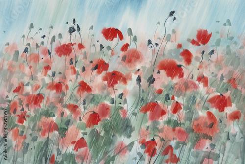Obraz na plátně Red poppy field in the rain watercolor background
