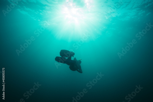 Tela Low angle view of freediver ascending to sea surface