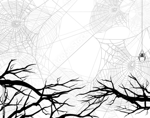 bare tree branches and spider web in dark forest - black and white halloween the Fototapeta