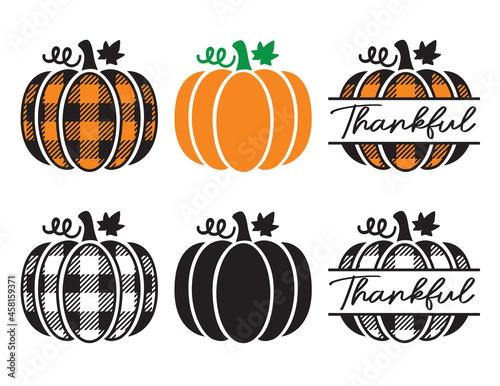 Photo Set of cute decorative pumpkins with plaid pattern