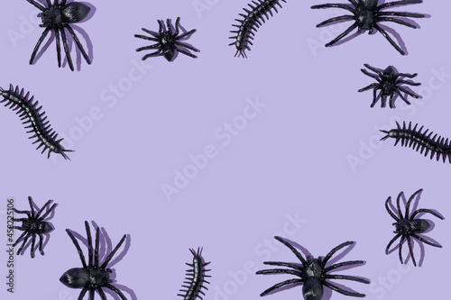 Leinwand Poster Creative pattern or frame with spiders and centipedes on pastel purple background