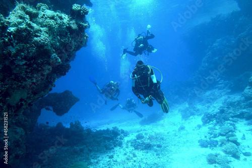 Fotografie, Obraz diving sea