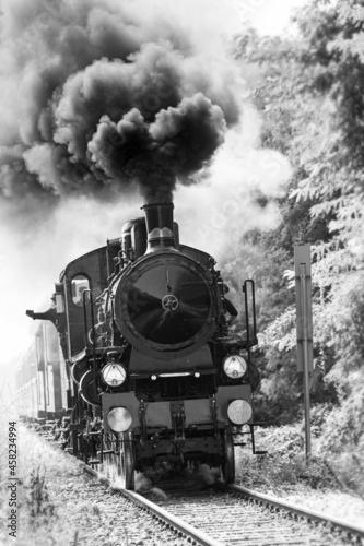 Obraz na plátně Steam train runs on the tracks in the countryside