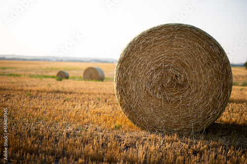 Photo Closeup of haystack in the farm field
