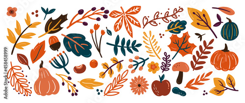 Obraz na plátně Cute autumn background vector