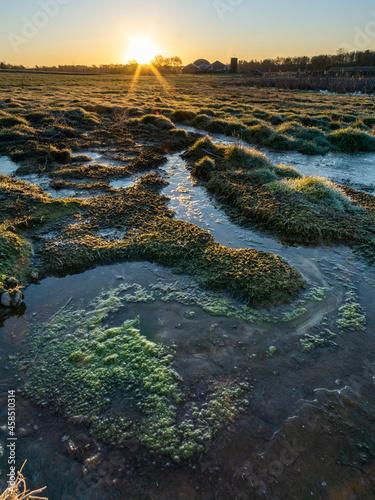 Obraz na plátně Sunrise in the moorland