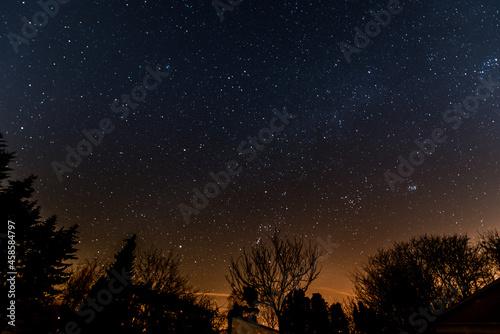Sternenhimmel mit Baumsilhouetten