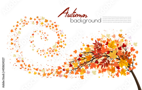 Fototapeta Autumn absctact background with a tree and a colorful leaves