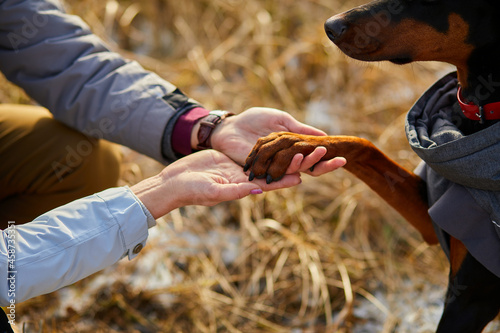 Two hands family and dog's paw- woman, man and doberman Fototapet