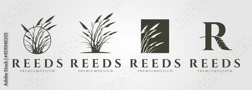 Fotografie, Obraz set of vector reed or cattail vintage logo vector illustration design