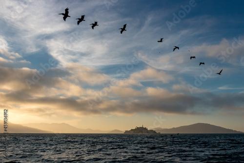 Canvas Vol d'oiseau au dessus d'Al Catraz dans la baie de San Francisco sous un joli ci