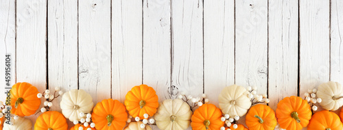 Autumn bottom border of orange and white pumpkins and berries on a white wood background. Top view with copy space.