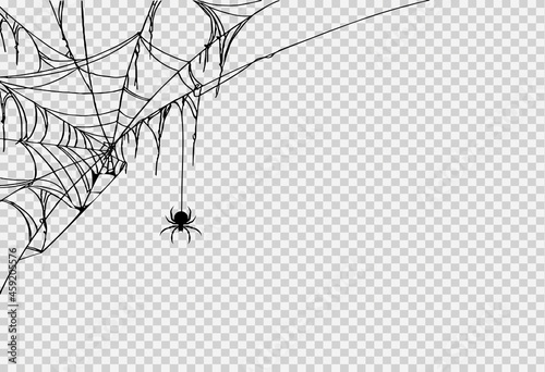 Fotografija Halloween party background with spider hanging from spiderwebs isolated png or t