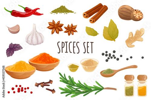 Obraz na plátně Spices icon set in realistic 3d design