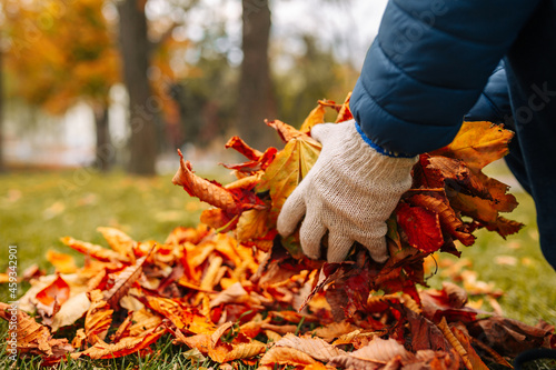 A close-up shot of a gloved man gathering leaves in a pile Fototapet