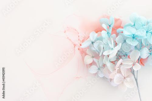 Obraz na plátně Creative image of pastel blue and pink Hydrangea flowers on artistic ink background