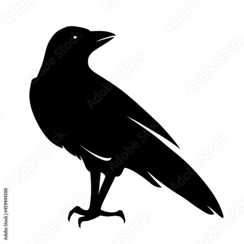 Billede på lærred Vector black silhouette of a raven bird isolated on a white background