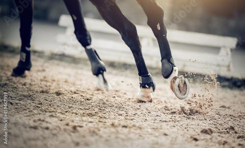 Canvastavla Equestrian sport