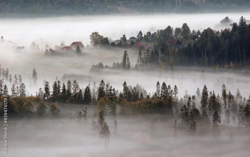 Jesień, mglisty krajobraz w salonie