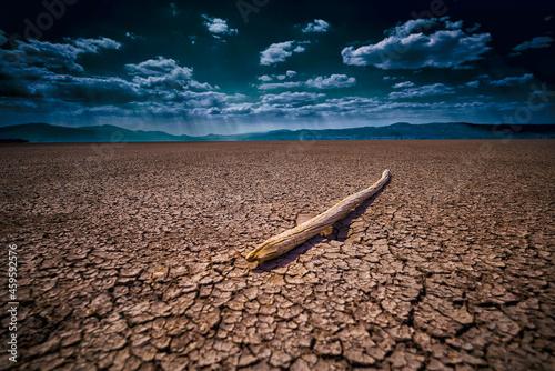 Wallpaper Mural desert, dry, earth, nature, landscape, sky, cracked, land, drought, soil, ground