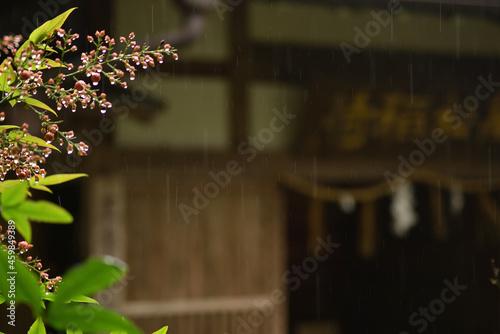 Tela 【静岡】秋雨のお稲荷様