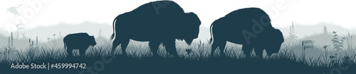 Foto Seamless panorama of the prarie with brown zubr buffalo bison family, heron and