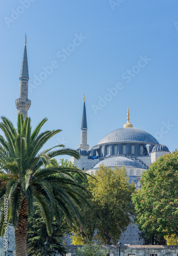 Wallpaper Mural View on the dome and minaret of Sultan Ahmet Mosque also Known as Blue Mosque in Istanbul